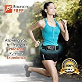 Best Running Belt For IPhone 6, Samsung & Most Smartphones - Premium Exercise & Workout Fitness Belt -Adjustable...
