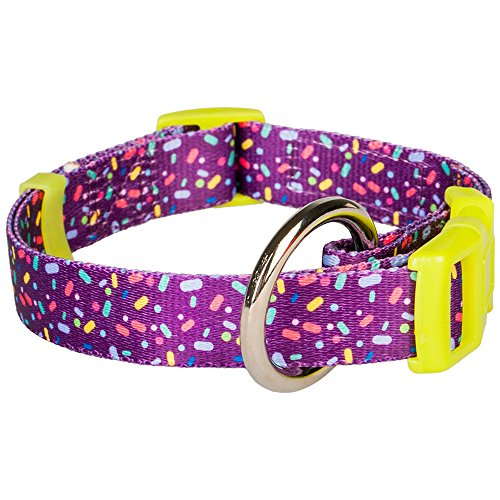 """Blueberry Pet Collars For Dogs 5/8"""" Small Candy Crush Inspired Orchid Dog Collar front-1056578"""