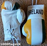 Ireland Flag Mini Boxing Gloves Ideal for Car Home or Office