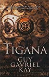 img - for Tigana (Fantasia / Fantasy) (Spanish Edition) book / textbook / text book