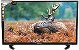 Worldtech WT-3175 31.5 Inch Full HD LED TV