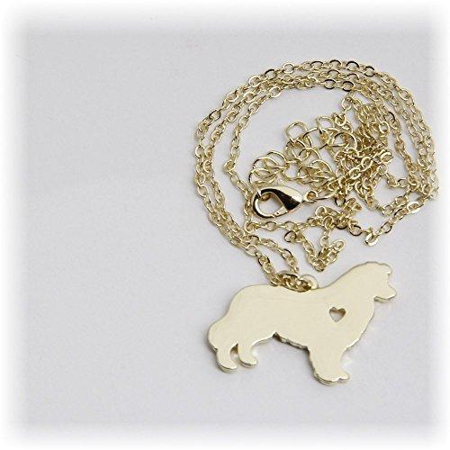 collier-border-collie-avec-coeur-avec-isalia-etui-a-bijoux