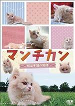マンチカン ~短足小猫の物語~ [DVD]