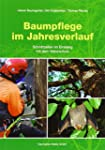 Baumpflege im Jahresverlauf: Schnittz...