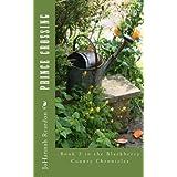 Prince Crossing: Book 3 of the Blackberry County Chronicles ~ JoHannah Reardon