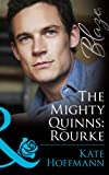 The Mighty Quinns: Rourke (Mills & Boon Blaze) (The Mighty Quinns, Book 21) (The Mighty Quinns Series 25)