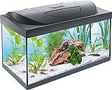 Tetra Starter Line Aquarium-Komplettset