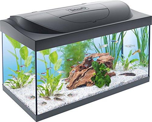 tetra-starter-line-aquarium-komplettset-mit-led-beleuchtung-stabiles-54-liter-einsteigerbecken-mit-t