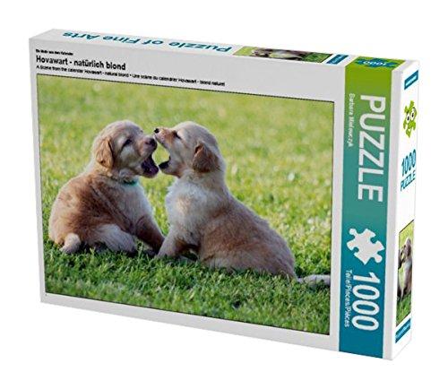 ein-motiv-aus-dem-kalender-hovawart-naturlich-blond-1000-teile-puzzle-quer-calvendo-tiere