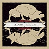 Set The Tigers Free - Villagers
