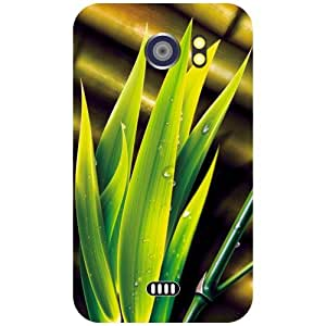 Micromax Canvas 2 A110 Back Cover - Flowers Designer Cases
