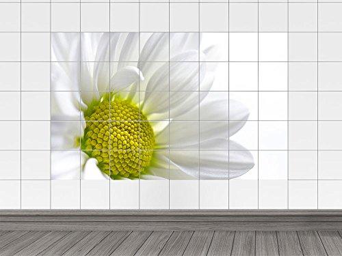Adesivo piastrelle immagine piastrelle fiori orchidee spa wellness