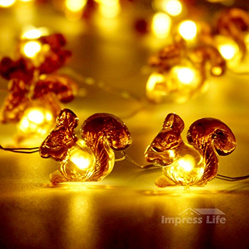 Squirrel Lights String By IMPRESS LIFE Silver Plated Copper Wire 10 ft 50 LEDs with Remote for Indoor, Outdoor, Fall, Thanksgiving, Wedding, Birthday, Baby Shower Parties & DIY Home Decorations