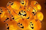 YOUR LOVE ハロウィンパーティーのデコレーションに20球パンプキンライト 260cm 経済的 電飾 飾り 屋外 室内 パンプキン