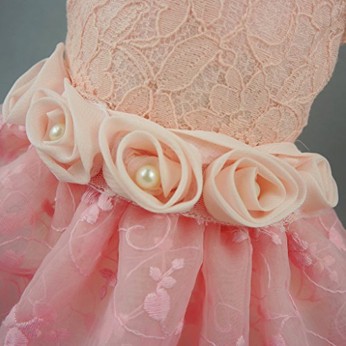 Fitwarm Pink Rose Pet Dog Wedding Dress Bride Clothes Tutu, Medium