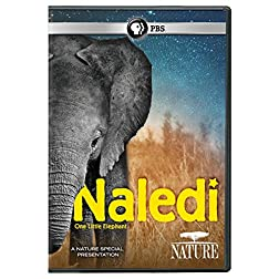 NATURE: Naledi: One Little Elephant DVD