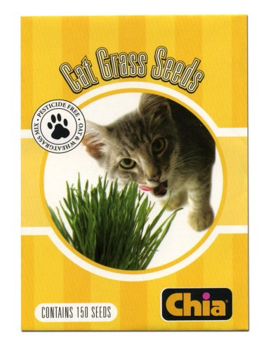 Chia Cat Grass Seeds 6-Pack (Pack of 2)