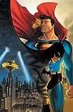 img - for Superman/Batman: Night & Day by Michael Green, Mike Johnson, Peter Johnson, Matt Cherniss(August 31, 2010) Hardcover book / textbook / text book