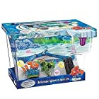 Finding Nemo Small Starter Fish Tank With Internal filter, Background & Decor