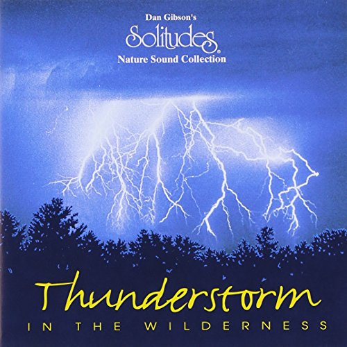 Thunderstorm In Wilderness
