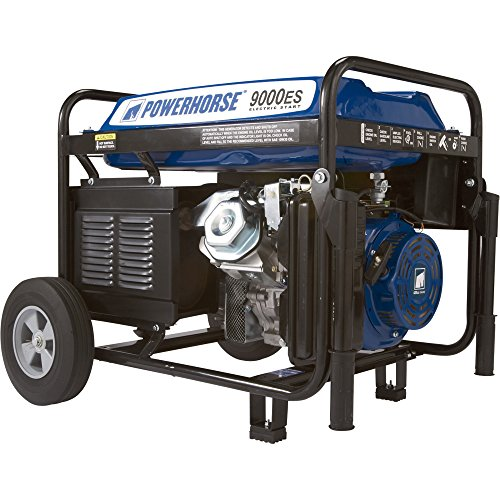 Powerhorse Portable Generator – 9000 Surge Watts, 7250 Rated Watts, Electric Start