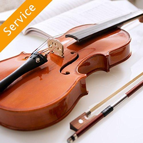 violin-lesson-one-30-min-session-in-studio