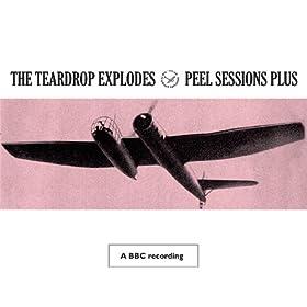 Peel Sessions Plus (BBC Version)