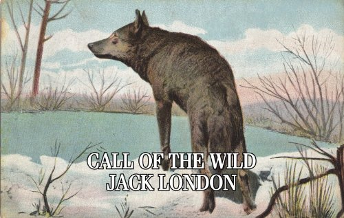 A MP3 CD AUDIO BOOK - THE CALL OF THE WILD by JACK LONDON