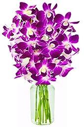 Fresh Cut Flowers -Dendrobium Purple Orchids with Vase