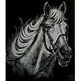 """WASO-Hobby - 4er Scrapy Kratzbilder Set - 4 Kratzbilder - Pferde Motive / Silber *Gro�*von """"WASO-Hobby"""""""