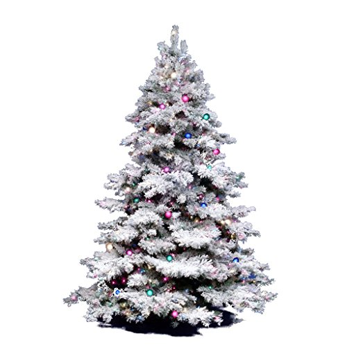 The Tradition Of Christmas Trees: Christmas Tree Traditions