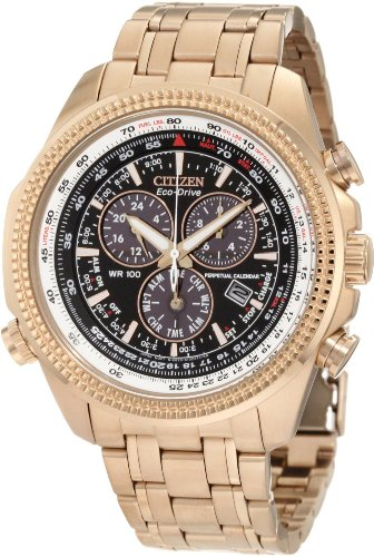 Citizen Men's BL5403-54E Eco-Drive Perpetual Calendar Chronograph Watch