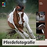 Pferdefotografie (mitp Fotografie)