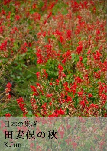 日本の集落 田麦俣の秋