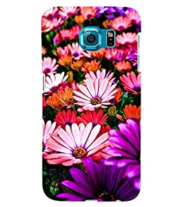 GADGET LOOKS PRINTED BACK COVER FOR SAMSUNG GALAXY NOTE 5 EDGE MULTICOLOUR