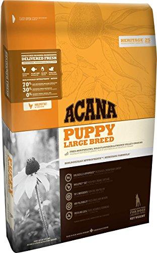 Acana Puppy Large Breed - Offerta - 11.4 Kg