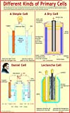 Different Kinds Of Primary Cells