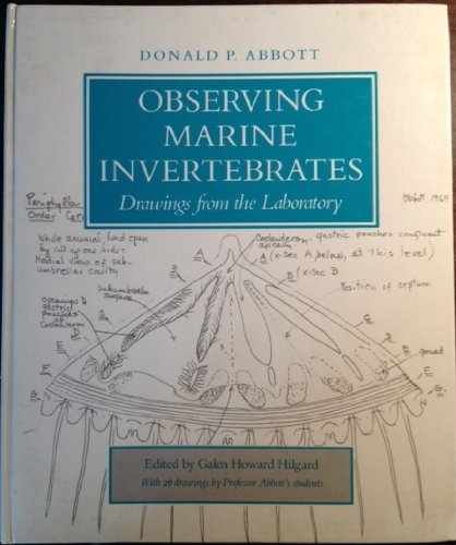 observing-marine-invertebrates-drawing-from-the-laboratory