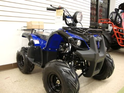 atv 125cc fully automatic with reverse 1 year engine. Black Bedroom Furniture Sets. Home Design Ideas