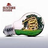 echange, troc Suntree - Inside
