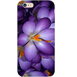 Casotec Purple Flower Design Hard Back Case Cover for Apple iPhone 6 Plus / 6S Plus