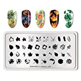Summer Fruit Nail Art Stamping Template Tropical Punch Pattern Rectangle Image Plate Stamping Polish Needed BP-O-L002 (Color: BP-O-L002)