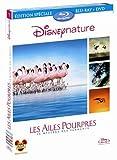 echange, troc Les Ailes pourpres : le mystère des flamants [Blu-ray]