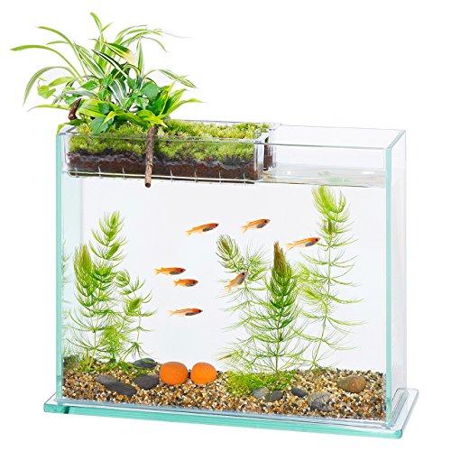 アクアテリア S300 メダカ用(ガラス水槽と水耕栽培プランターのセット)【...