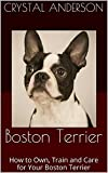 Boston Terrier: How to Own, Train and Care for Your Boston Terrier