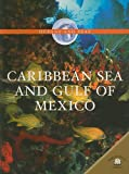 Caribbean Sea And Gulf of Mexico (Oceans and Seas) (0836862805) by Green, Jen