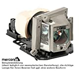 Beamer projector replacement lamp IPX LMP-H202 with housing for Sony HW30ES VPL-HW30 VPL-HW30ES VPL-HW30ES SXRD projector BEAMER