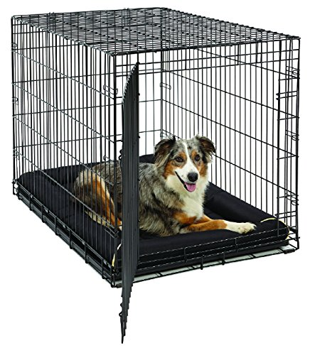maxx ultrarugged dog bed by midwest homes for pets