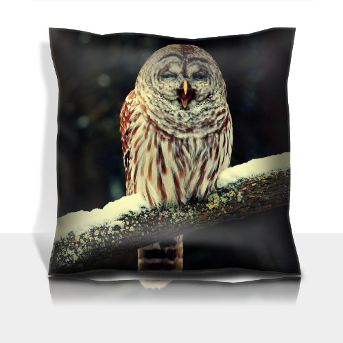 Owl Bird Branch Beak Yawns 100% Polyester Filled Comfort Square Pillows Customized Made To Order Support Ready Premium Deluxe 17 1/2 Inch X 17 1/2 Inch Liil Graphic Background Covers Designed Color Definition Quality Simplex Knit Fabric Soft Wrinkle Free front-903885