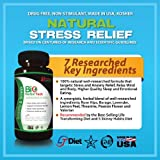 Natural Stress and Anxiety Relief (Vegetarian Capsules with Valerian, L-Theanine, Rose Hips, Borage, Lavender, Lemon Peel, Passion Flower). Made in USA, GMP Certified, Kosher